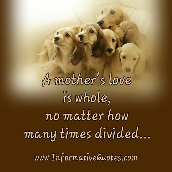 Quotes For Mothers Love Simple A Mother's Love Is Whole  Informative Quotes