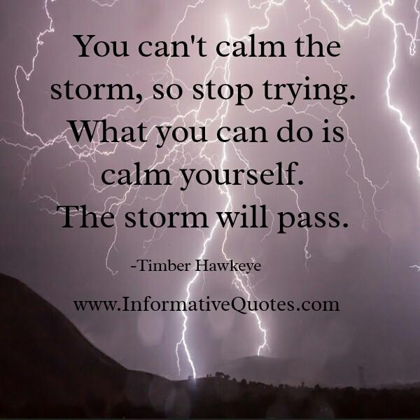 You can't calm the storm, so stop trying